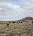 30347001-N Alpine Ranches - Photo 4