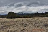 7732 Elk Run Trail - Photo 13