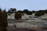 7732 Elk Run Trail - Photo 3