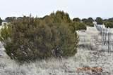7732 Elk Run Trail - Photo 4
