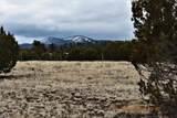 7732 Elk Run Trail - Photo 8