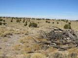 10424 Line Cook Trail - Photo 18