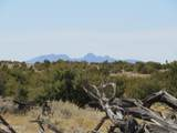 10424 Line Cook Trail - Photo 30