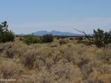 10424 Line Cook Trail - Photo 41