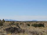 10424 Line Cook Trail - Photo 42