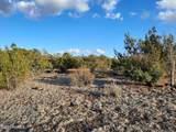 1024 Kruger Long Road - Photo 1