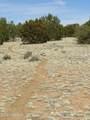 8151 Mineral Wells Road - Photo 6