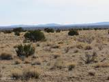 8179 Big Bear Road - Photo 19