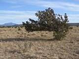 8179 Big Bear Road - Photo 2