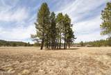 4565 Brackin Ranch Road - Photo 8