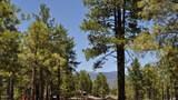 3160 Solitaries Canyon Drive - Photo 12
