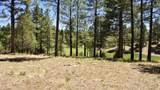3160 Solitaries Canyon Drive - Photo 14