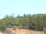 31727 Rancho Vista Lane - Photo 1