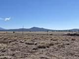 10981 Horse Hill Trail - Photo 11