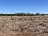 10981 Horse Hill Trail - Photo 12