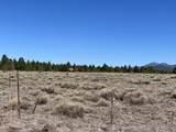 10981 Horse Hill Trail - Photo 14
