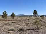 10981 Horse Hill Trail - Photo 2