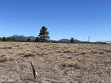 10981 Horse Hill Trail - Photo 3