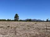 10981 Horse Hill Trail - Photo 4