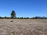 10981 Horse Hill Trail - Photo 5
