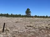 10981 Horse Hill Trail - Photo 6
