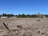 10981 Horse Hill Trail - Photo 7