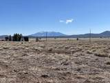 10981 Horse Hill Trail - Photo 8