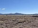 10981 Horse Hill Trail - Photo 9
