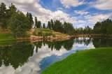 1600 Castle Hills Drive - Photo 12