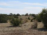 1125 Red Butte Road - Photo 18
