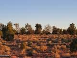 Parcel D Red Butte Road - Photo 10