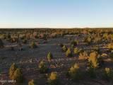 Parcel D Red Butte Road - Photo 13