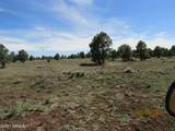 322 Forest Service 3341 Road - Photo 4