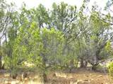 Lot 268 Olivas Alone - Photo 12