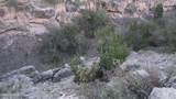 5215 Sun Dog Trail - Photo 12