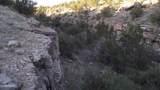5215 Sun Dog Trail - Photo 13