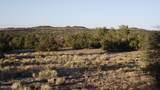 5215 Sun Dog Trail - Photo 17