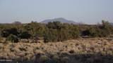 5215 Sun Dog Trail - Photo 18