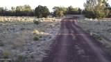 5215 Sun Dog Trail - Photo 20