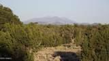 5215 Sun Dog Trail - Photo 4