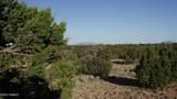 5215 Sun Dog Trail - Photo 5