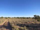 4279 Mohave Trail - Photo 17