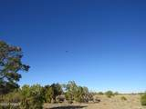 4279 Mohave Trail - Photo 19