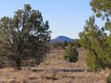 4279 Mohave Trail - Photo 2