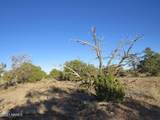 4279 Mohave Trail - Photo 25