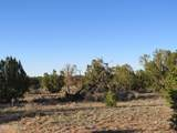 4279 Mohave Trail - Photo 29