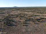 4279 Mohave Trail - Photo 32