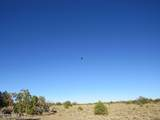 4279 Mohave Trail - Photo 34