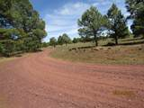 312 Forest Service 3341 Road - Photo 1