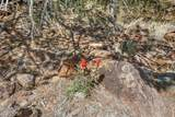 1563 Canvasback Trail - Photo 13